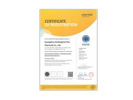 今盛美-欧盟ISO-22716:2007认证英文
